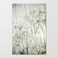 botanical abstract Canvas Print