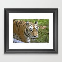 Close Encounters Of The … Framed Art Print