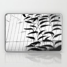 Kelp Wall In Black And W… Laptop & iPad Skin