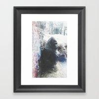 Grumpy Gorilla @ Buffalo… Framed Art Print