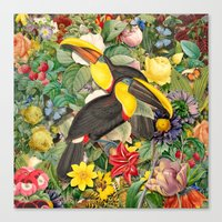 Toucans 2 Canvas Print