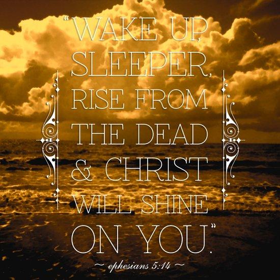 Wake Up Sleeper Art Print