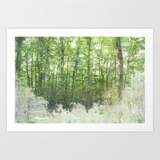 natura 2 Art Print