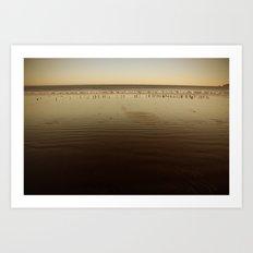Seagulls on the Horizon Art Print