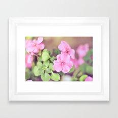 Soft Pinkness Framed Art Print
