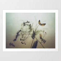 pine wings Art Print