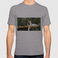 sunbath Mens Fitted Tee Athletic Grey SMALL