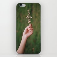 Our Spring iPhone & iPod Skin
