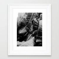 After The Rainfall.... Framed Art Print