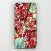 Candied Fall iPhone & iPod Skin