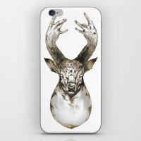 King Of The W/HOOD iPhone & iPod Skin