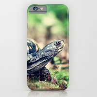 Slowpoke iPhone 6 Slim Case