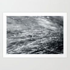 Fire Grass in Black and White Art Print