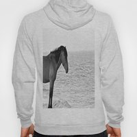 Assateague Pony Hoody