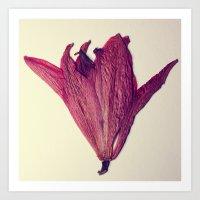 Pressed Flower Art Print