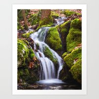 Race Brook Glen 2 Art Print
