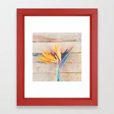 Aloha Bird Framed Art Print
