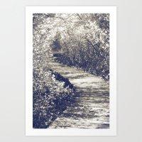 Fairy Walk II Art Print