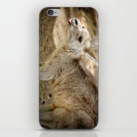 Razzie Kangaroo iPhone & iPod Skin