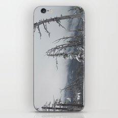 Where The Trees Die iPhone & iPod Skin