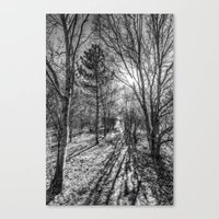 The Forest Path Canvas Print