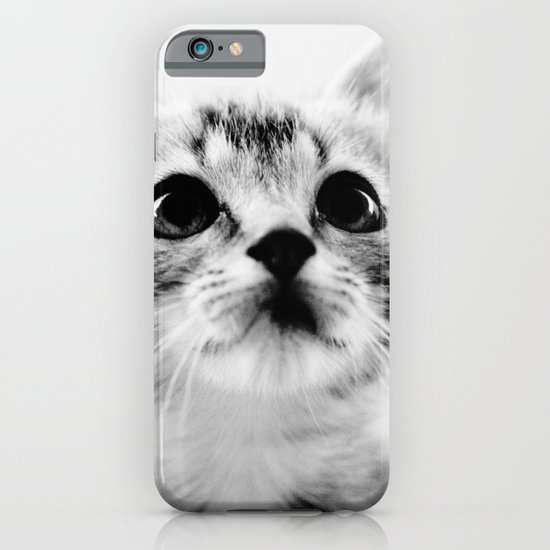 Sweet Kitten iPhone & iPod Case