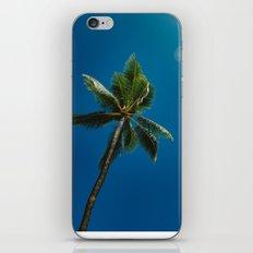 palm tree ver.summer iPhone & iPod Skin