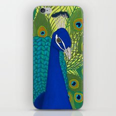 Peacock in Colour iPhone & iPod Skin