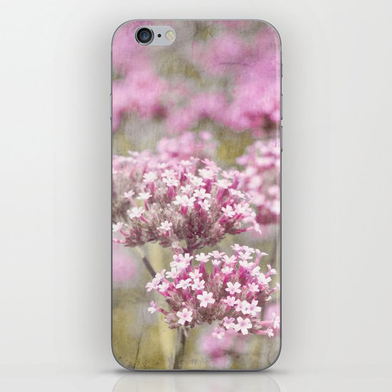 catmint iPhone & iPod Skin