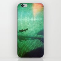 Trout iPhone & iPod Skin