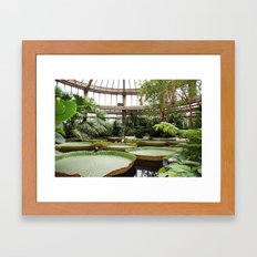 2009 - Winter Garden Framed Art Print