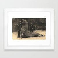 Elephant Seal Paris Parc Zoologique - Vintage / Antique French Post Card From the 1930's  Framed Art Print