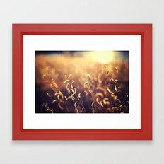 For The Dream Framed Art Print