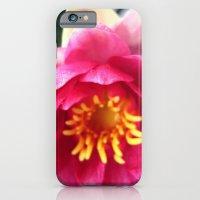 Pink WaterLily II iPhone 6 Slim Case