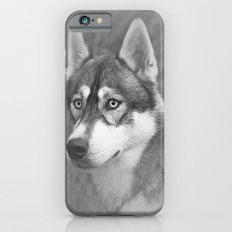 Siberian Husky iPhone 6 Slim Case