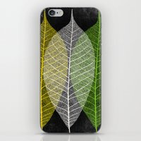 'Natural Dry Leaves' iPhone & iPod Skin