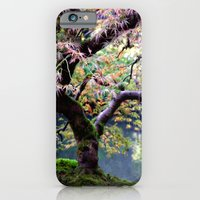 iPhone & iPod Case featuring Autumn Maple by Barbara Gordon Photography