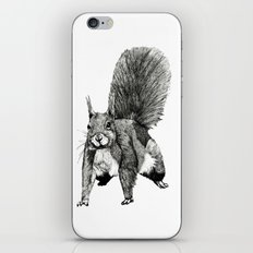 Pesky Squirrel iPhone & iPod Skin