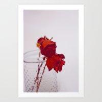 red rose. Art Print