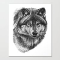 Canis Lupus SK0105 Canvas Print