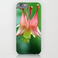 Wild Columbine iPhone 6 Slim Case