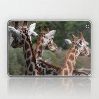 Lovely Ladies Laptop & iPad Skin