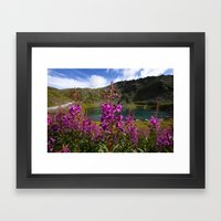 Fireweed - Hatcher Pass Alaska Framed Art Print
