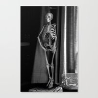 The Skeleton By The Prin… Canvas Print