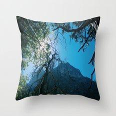 ZMT Throw Pillow