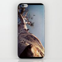 Wisdom That Touches the Sky iPhone & iPod Skin