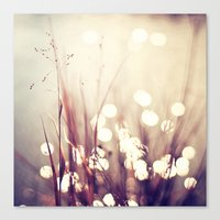 Glimmerings Canvas Print