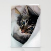 Kitten in Covers Stationery Cards