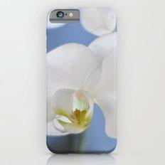 White Phalaenopsis iPhone 6s Slim Case