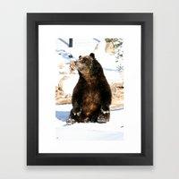 Chillin' Bear Framed Art Print